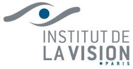 Logo idv new